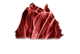 Justino Parra Logo